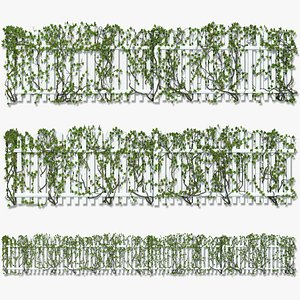 Fence with Ivy v8 3D model