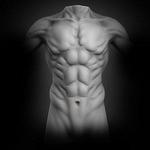 3D creature muscular torso