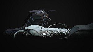 3D invertebrate centipede insect