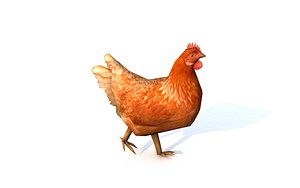 chicken rigged animations 3D