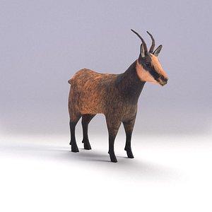 goat antelope 3D model