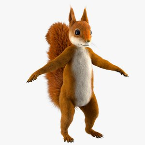 3D cartoon squirrel model
