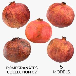 Pomegranates Collection 02 - 5 models model