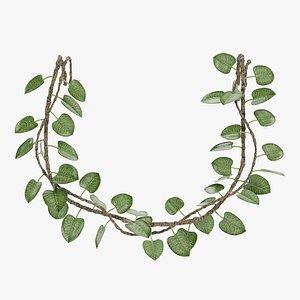 liana plant 3D model