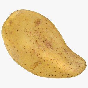 3D Raw Potato