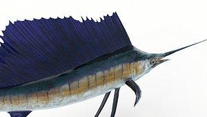 3D Animated Sailfish PBR