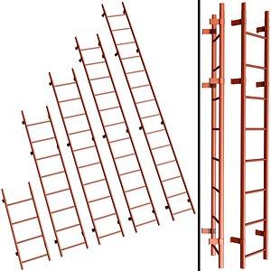 3D safety roof ladder
