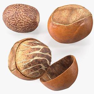 3D model Shea Nuts Set