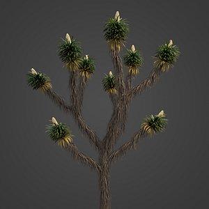 3D 2021 PBR Joshua Tree Collection - Yucca Brevifolia