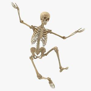 Real Human Female Skeleton Pose 70(1) 3D model