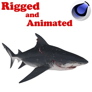 ELDER shark Rigged and Animated 3D model