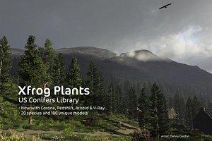 3d conifer trees dvd north america