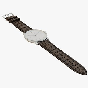 luxury watch silver brown model