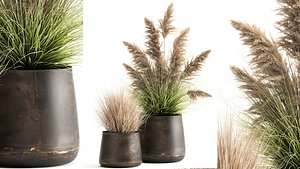 3D Reeds in a rusty flower pot for the interior 948