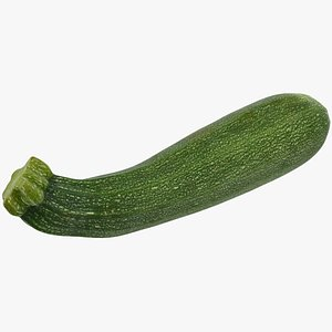 3D food vegetable zucchini