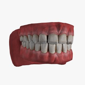 3D model Mouth Rigged And Animated