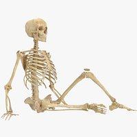 Real Human Woman Skeleton Bones Anatomy 01 Rigged With Biped