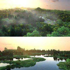 scene plants 3D