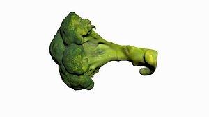 Half Broccoli 3D model