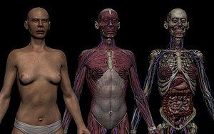 3D HD Female Complete Human 3D Anatomy Model