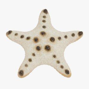 chocolate chip starfish 3D model