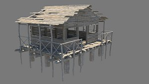 Water House Shack 3D model