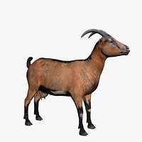 Realistic Brown Goat