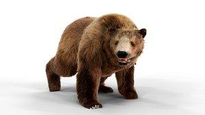 Black Brown Fur animated 3D model