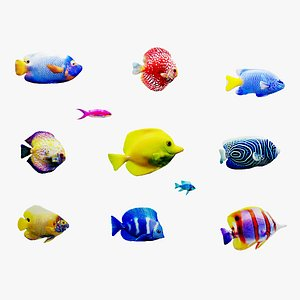 3D model tropical fish swimming animation