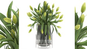 3D Bouquet of green tulips in a Vase 116