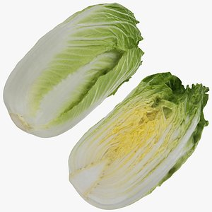 chinese cabbage set model