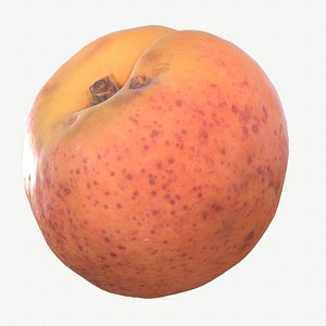 3D 08 hy apricot fruit