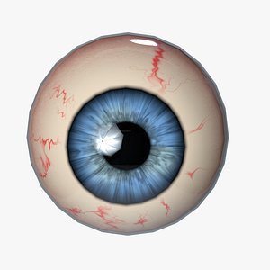 cute eyes human 3D model