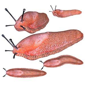 Fully rigged low poly Slug model