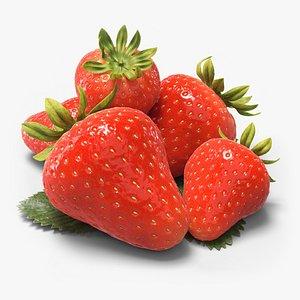 3D strawberries leaf model