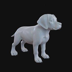 Labrador Puppy Stylized 3D model