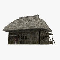 Ancient thatched houses