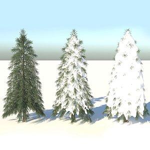 fraseri tree model