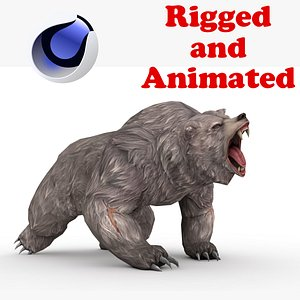 3D Bear Rigged and Animated model