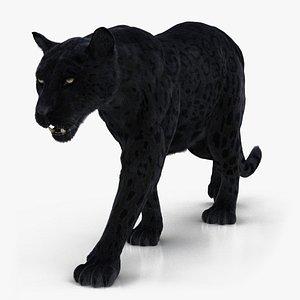 3D model black rigged fur