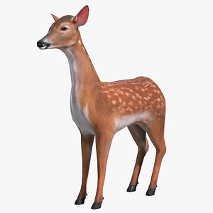 3D Animated Lowpoly Baby Deer