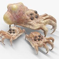 Kranion Creature like Facehugger or Headcrab or Baneling  Game ready