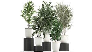 3D decorative tree pot