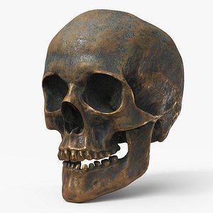 Human Skull  Old Gold A - PBR 3D model