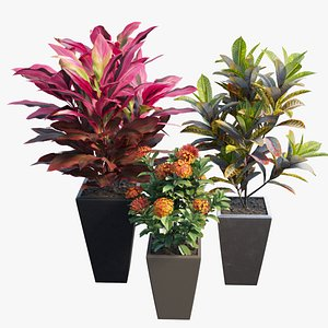 Pots and Planters set 01 3D model