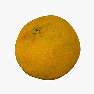 3D Bahia Orange - Extreme Definition 3D Scanned