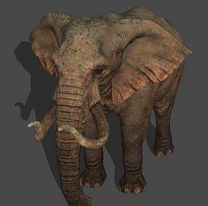 elephant animal 3D