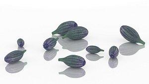 3D model lavender flower spices plant