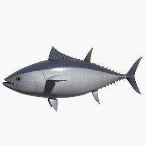 3d model bluefin kuromaguro
