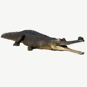 3d model gharial crocodile